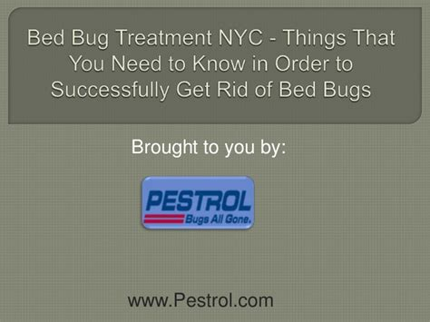 7 Things You Need To About Bedbugs by Bed Bug Treatment Nyc Things That You Need To In