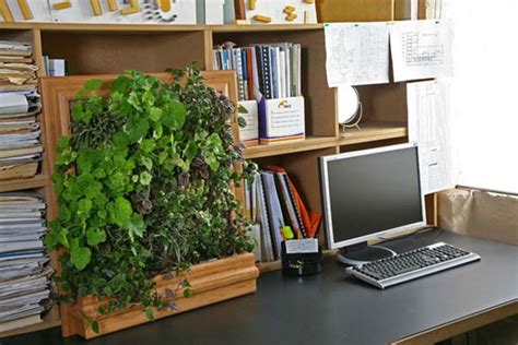 Garden Office Accessories Cool Vertical Garden Newhouseofart Cool Vertical