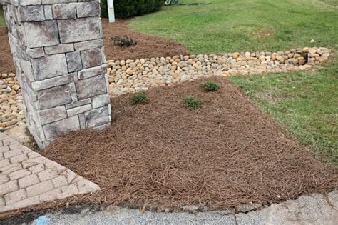 landscaping a drainage ditch 2017 2018 best cars reviews