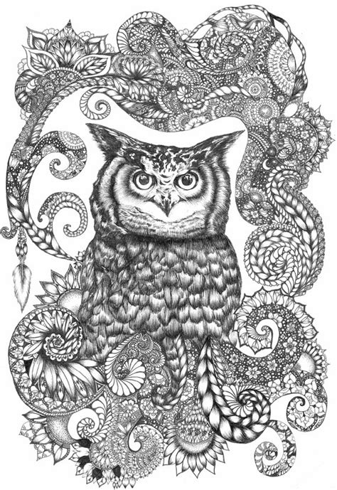 owl zentangle coloring page 1000 images about buhos para colorear on pinterest