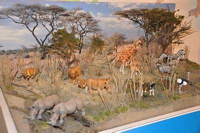 Diy Miniatur Papercraft Taman Safari 27 best mountain dioramas images on