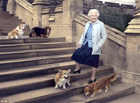 Queen Elizabeth Dog | the queen s pet corgi who starred in 007 olympic opening
