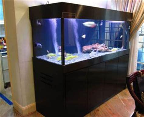 Termometer Air Akuarium arwana cara budidaya ikan hias air tawar