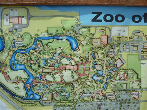 zoo layout plan master plan 187 sedgwick county zoo gallery kansas my home