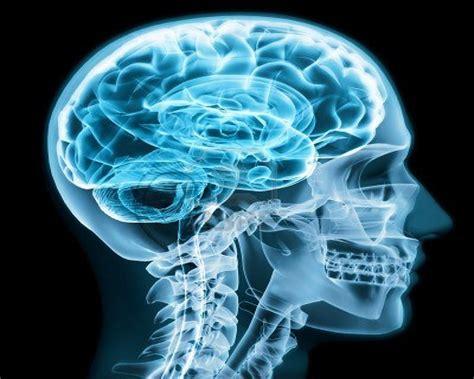 imagenes animadas rayos x 5 rayos x contra la enfermedad del sue 241 o avance al futuro