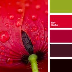 red and green color combination color palette 1372