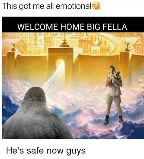 this got me all emotional welcome home big fella he s safe