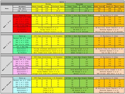 531 program template jim wendler s 5 3 1 strength program with dave tate s