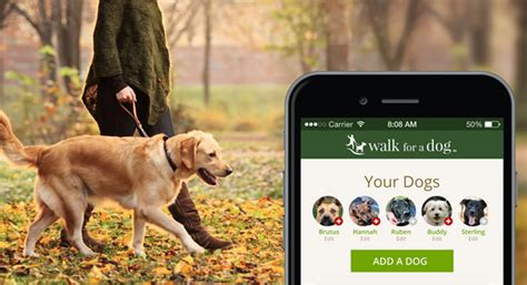 for dogs app best apps wooftrax and iclicker the bark