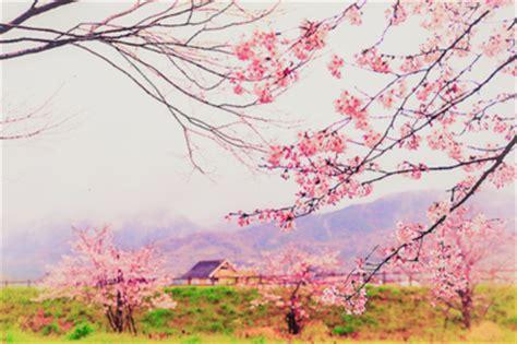 imagenes de paisajes kawaii pin paisajes kawaii on pinterest