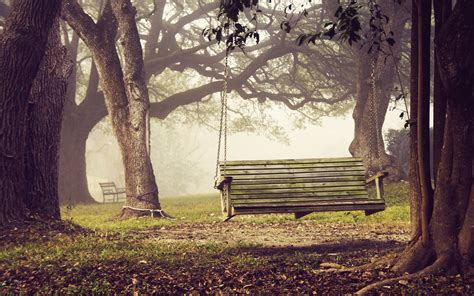 swing in the bench swing in the forest wallpaper