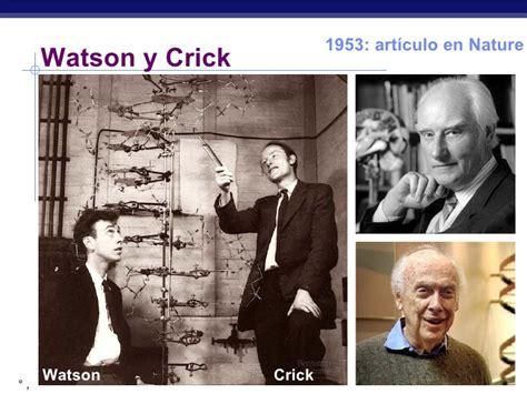 biografia watson y crick historia del adn powerpoint para 4 186 medo biolog 237 a plan