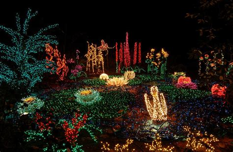 Bellevue Lights by Garden D Lights At Bellevue Botanical Garden Seattleite