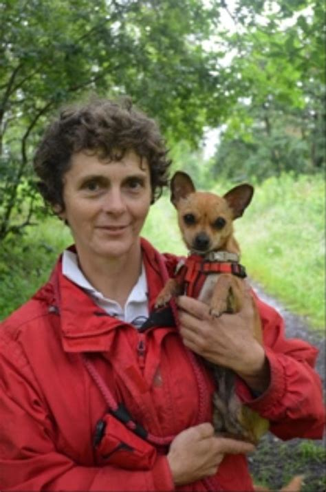 Small Dogs Battersea Dogs Home Battersea Sees More Cases Of Small As