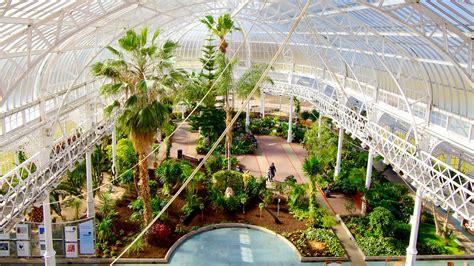 glasgow winter gardens s palace and winter gardens in glasgow scotland
