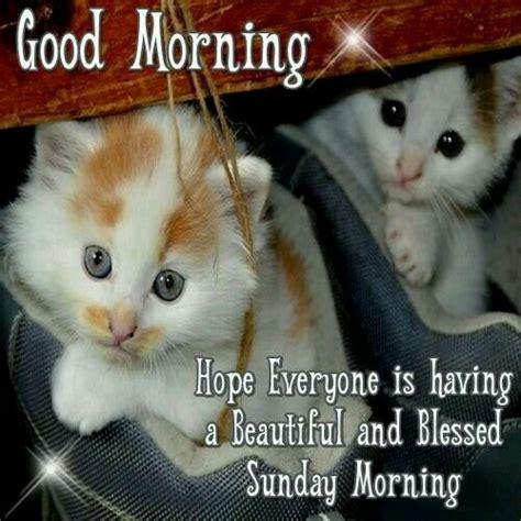 sunday good morning beautiful good morning beautiful sunday morning pictures photos