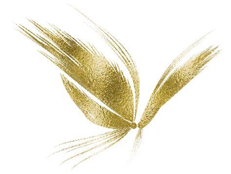 imagenes mariposas doradas zoom dise 209 o y fotografia 10 12 12