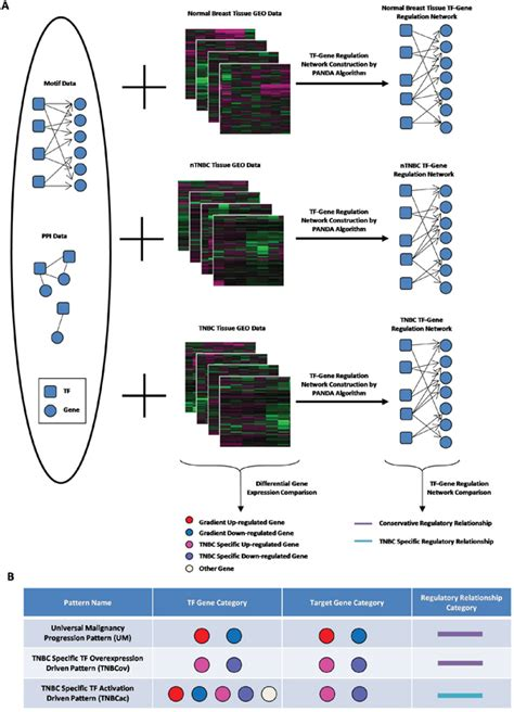 pattern analysis for melanoma oncotarget gene regulatory pattern analysis reveals