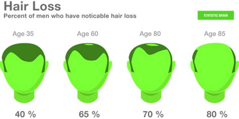 what percentage of men lose hair stats hair loss statistics statistic brain