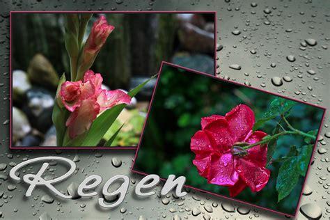 schon wieder regen foto bild regenfotos wetter
