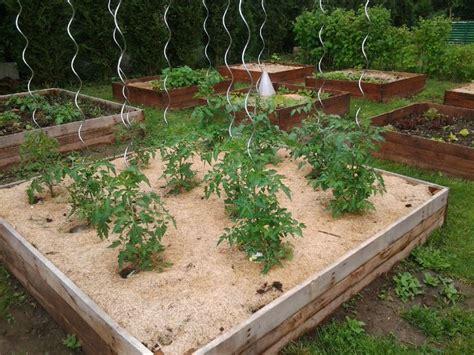 Carrã Potager Tomates Installation De La Mini Serre Le D 233 But De L Aventure