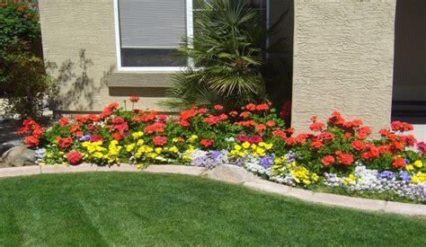 arizona landscaping ideas 55 best arizona landscaping images on arizona