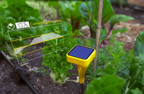 smart garden system has potential to revolutionise agriculture