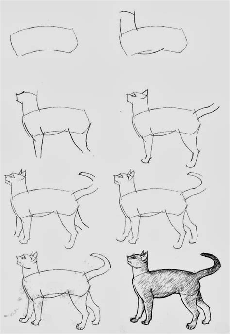 how to draw with doodle cat 1 how to draw cats diy craft projects