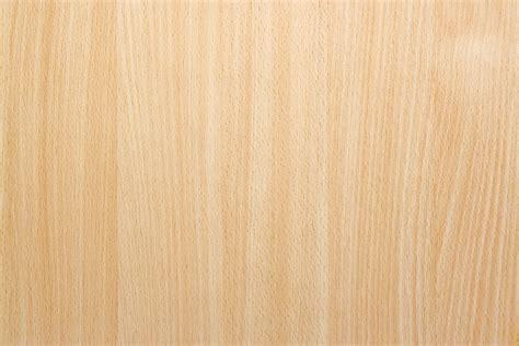 Woods Herbal Beech Wood Background Texture Gufo