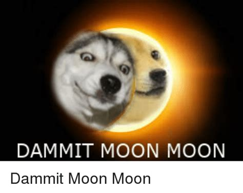 Moon Moon Meme - dammit moon moon dammit moon moon doge meme on me me
