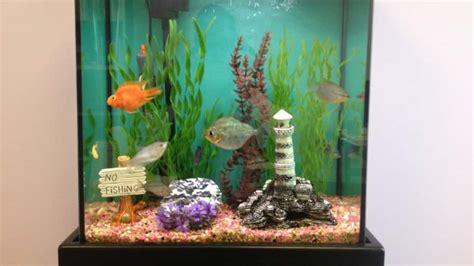 move  fish tank angies list