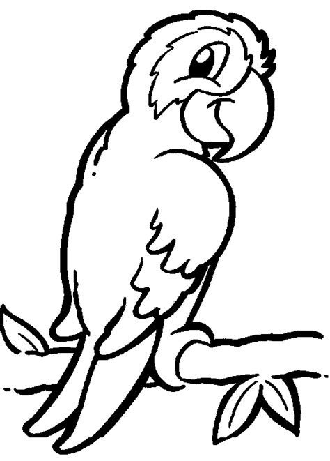 Parrot Coloring Child Coloring Coloring Pages Parrot