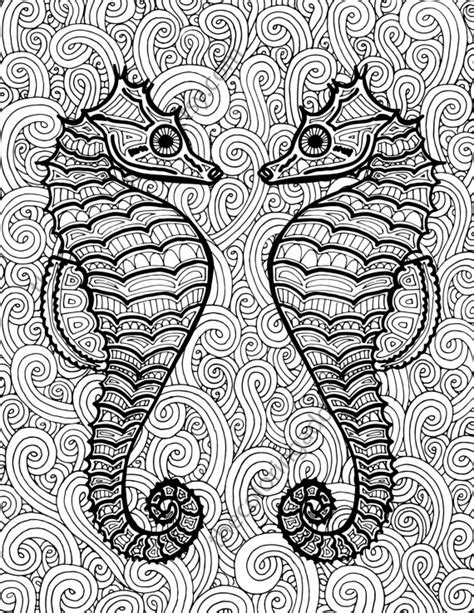 hard seahorse coloring pages seahorse coloring page adult coloring sheet by