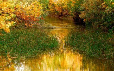 beautiful nature images beautiful nature drawing 4k widescreen wallpaper hd