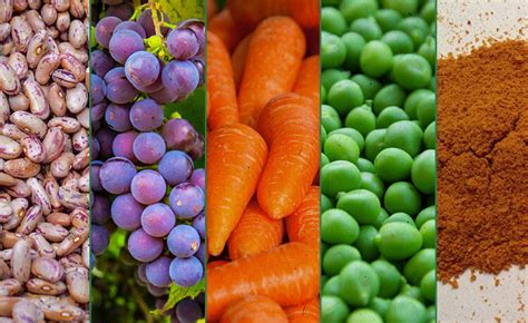alimentos anti oxidantes o que s 227 o antioxidantes veja quais alimentos s 227 o ricos