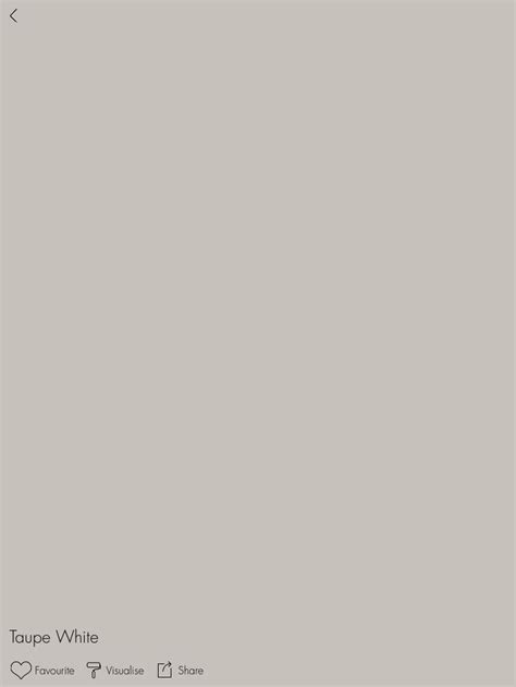 taupe taupe walls and wall colours on