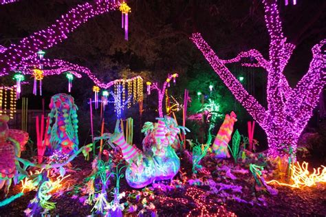 Awesome Houston Zoo Lights All About House Design Houston Zoo Lights