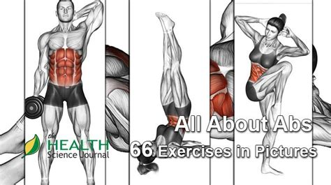 abs  exercises  pictures bodybuilding