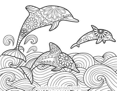 coloring pages in pdf format free printable dolphin adult coloring page download it in
