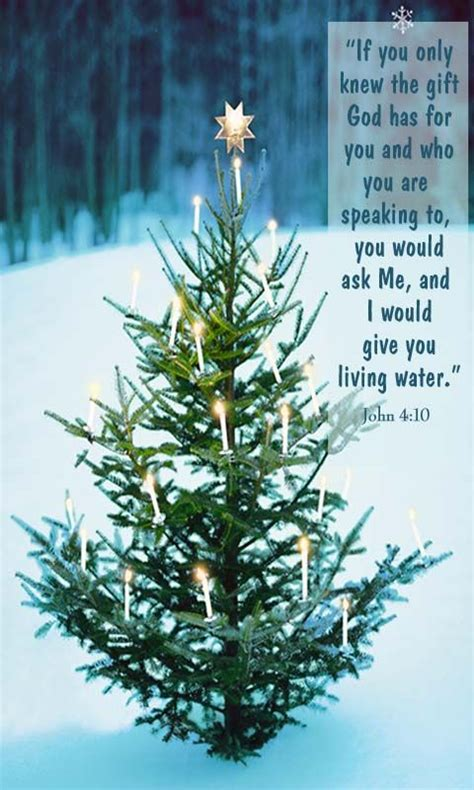 images of christmas trees with scriptures 195 best images on bible scriptures scriptures and bible quotes