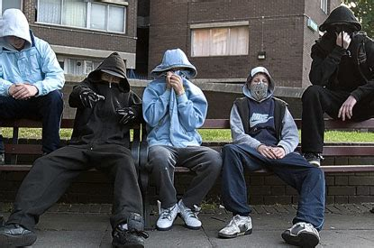 brain scans  street gangs  trace reasons  life