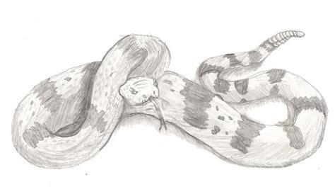 imagenes de serpientes para dibujar a lapiz mis retratos a lapiz de actores y otros dibujos de