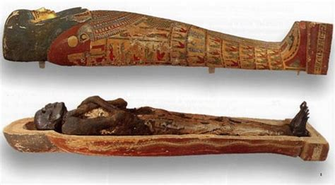 imagenes momias egipcias para niños momias y sarc 211 fagos secretos de egipto