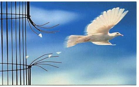 imagenes que inspiran libertad tiempo de reflexi 243 n conducta 233 tica libertad personal y
