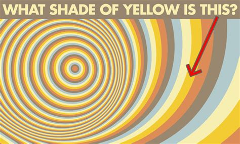 buzzfeed pattern test this trippy pattern quiz will determine how well you see color