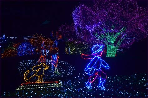 43 Best Puyallup Tacoma Images On Pinterest Washington Zoo Lights In Tacoma