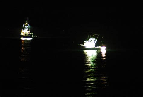 squid fishing at night from a boat file squid boats jpg wikimedia commons