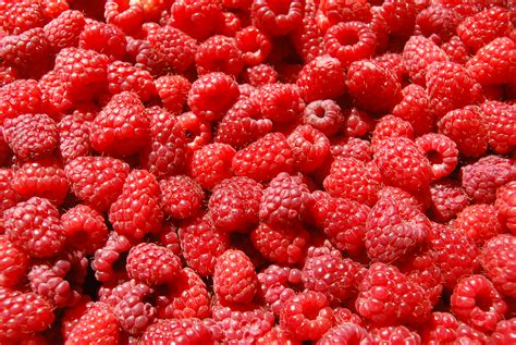 Teh Raspberry raspberries images raspberries hd wallpaper and background photos 35243775