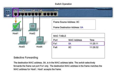 Search Mac Address On Optimus 5 Search Image Switch Mac Address Table
