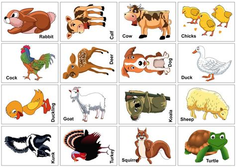animal card template 15 animal flash cards baby